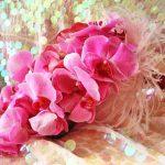pembe orkide gelin çiçegi