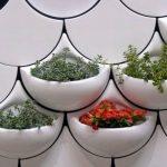 dekoratif gömme saksı modeli