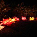 ledli çiçek figürlü fener modeli
