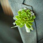 yeşil kaktüs şeklindeki damat yaka çiçekleri